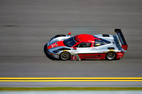 Action Express Racing Millennium Corvette DP
